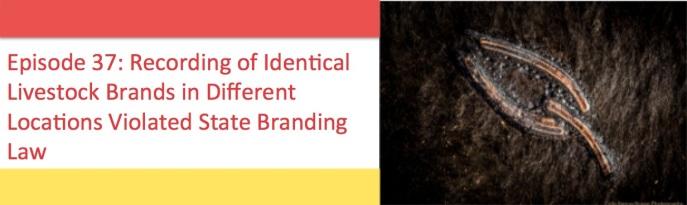 Branding law